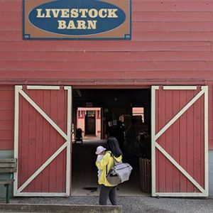 A Visit to Maplewood Farm with a Baby Infant