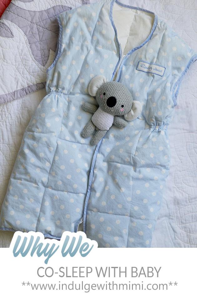 A baby sleeping bag shown with a koala stuffy.